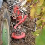 Travail du sol dans les vignes