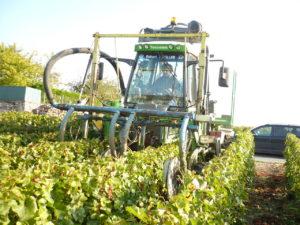 Travaux mécaniques dans les vignes.